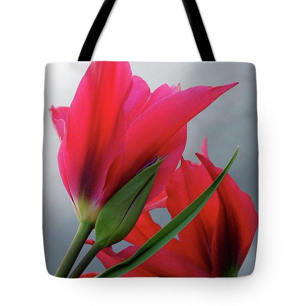 Love Tote Bag by Rona Black