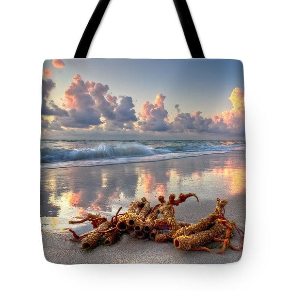 Morning Surf Tote Bag by Debra and Dave Vanderlaan