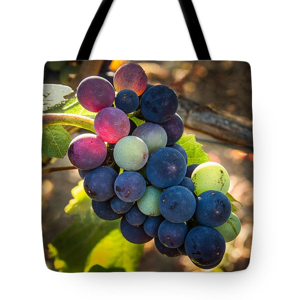 Mosaic Tote Bag by Jean Noren