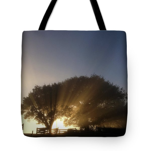 New Beginning Tote Bag by Les Cunliffe
