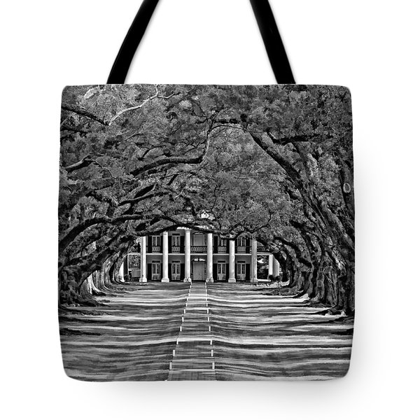 Oak Alley bw Tote Bag by Steve Harrington