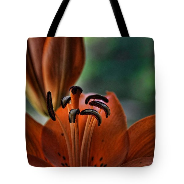 Orange Lilly Tote Bag by Saija  Lehtonen