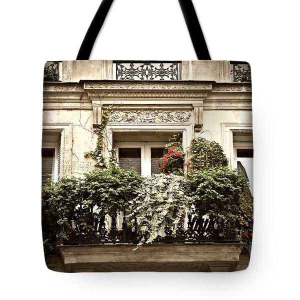 Paris windows Tote Bag by Elena Elisseeva