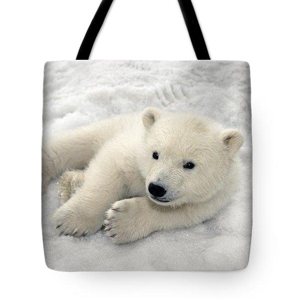 Polar Bear Cub Playing In Snow Alaska Tote Bag by Mark Newman