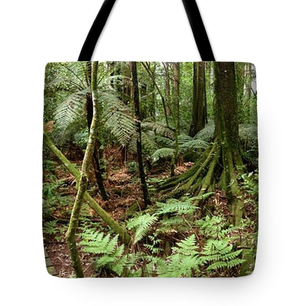 Rain forest Tote Bag by Les Cunliffe