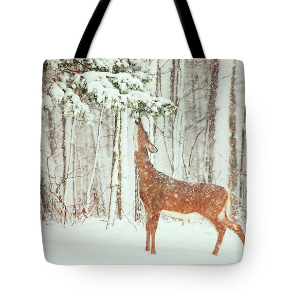 Reach For It Tote Bag by Karol  Livote