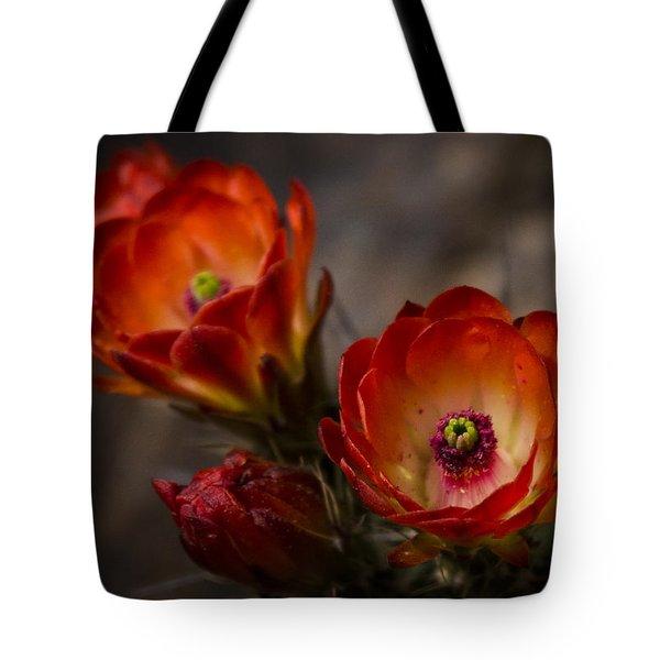 Red Hot Hedgehog  Tote Bag by Saija  Lehtonen