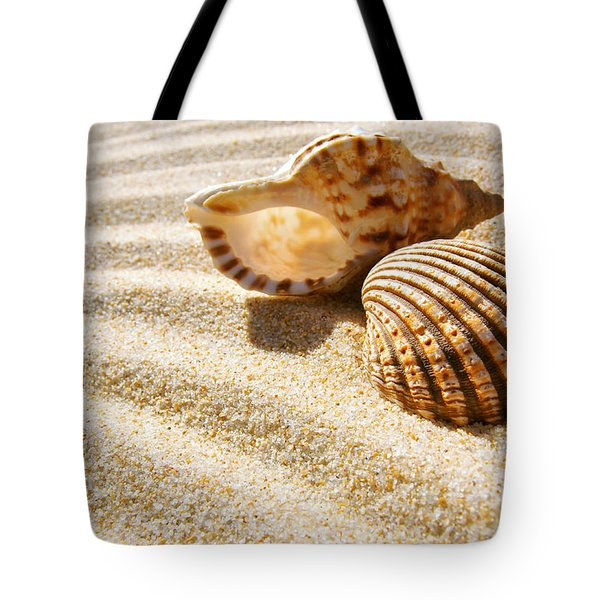 Seashell And Conch Tote Bag by Carlos Caetano