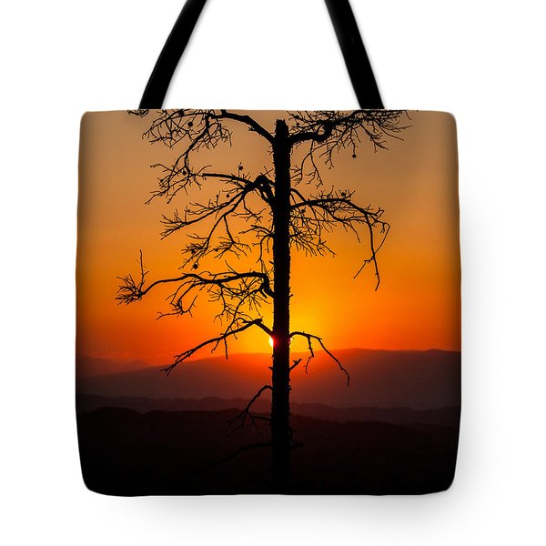 Serenity Tote Bag by Davorin Mance