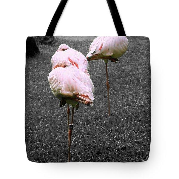 Sleeping Flamingos Tote Bag by Cheryl Young