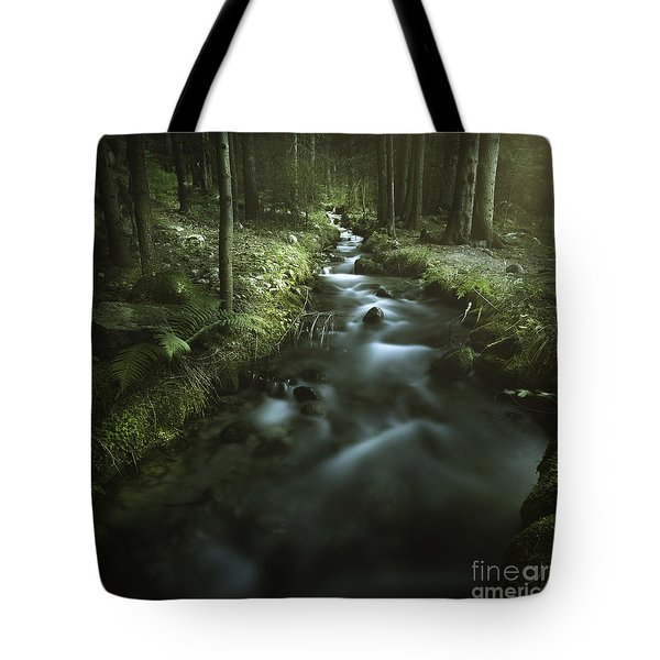 Small Stream In A Forest, Pirin Tote Bag by Evgeny Kuklev