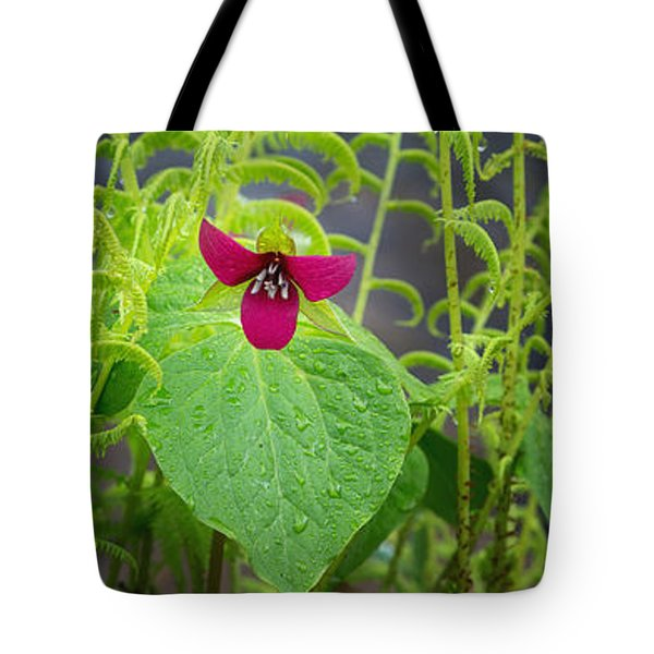 Spring Tote Bag by Bill  Wakeley