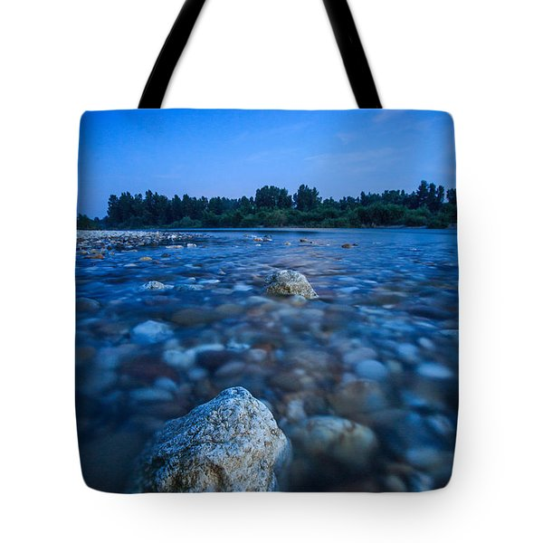 Summer Night Tote Bag by Davorin Mance