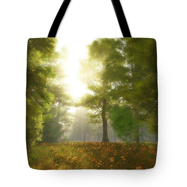 Sunlit Meadow Tote Bag by Cynthia Decker