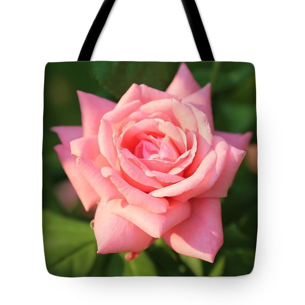 Sweet Pink Rose Tote Bag by Carol Groenen