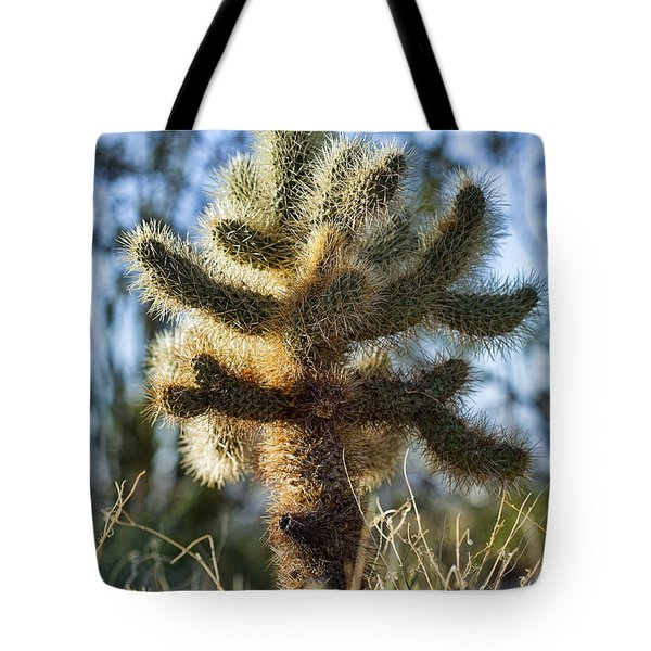 Teddy Bear Cholla Tote Bag by Kelley King