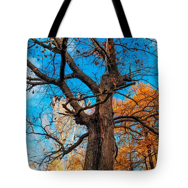 Texture Of The Bark. Old Oak Tree Tote Bag by Jenny Rainbow