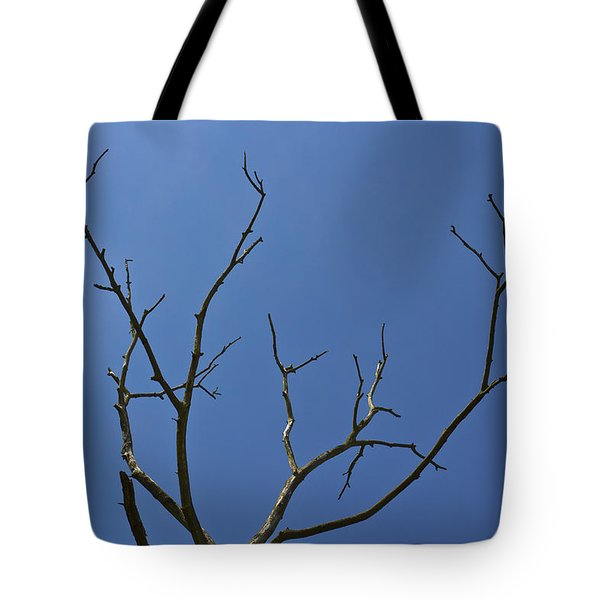 The Lightning Tree Tote Bag by David Pyatt