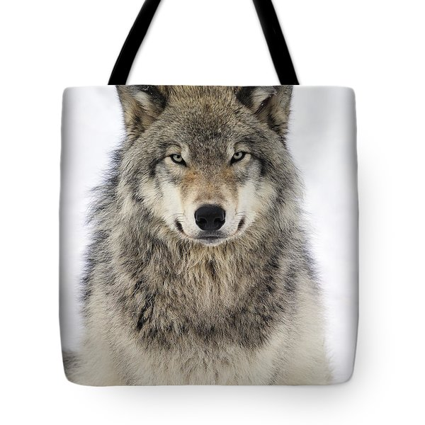 Timber Wolf Portrait Tote Bag by Tony Beck