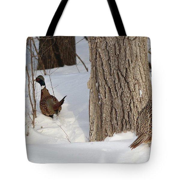 Undercover Tote Bag by Lori Tordsen