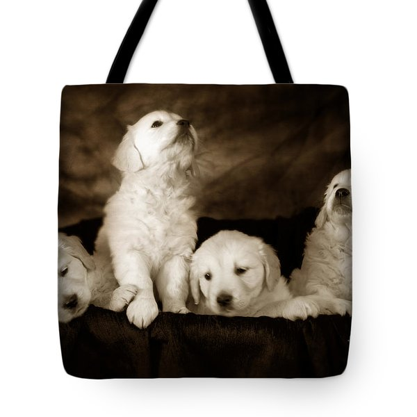 Vintage Festive Puppies Tote Bag by Angel  Tarantella