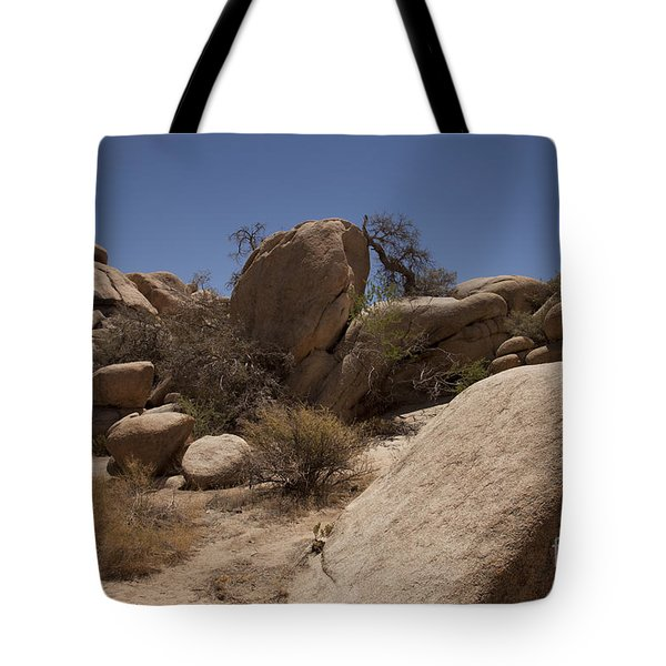 Waiting Tote Bag by Amanda Barcon