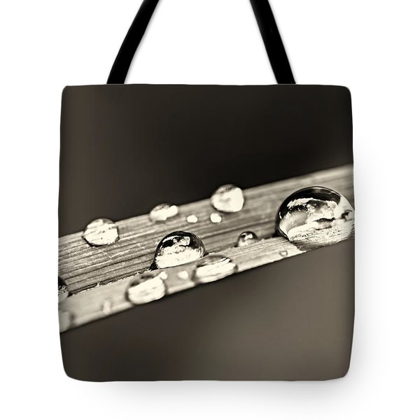 Water drops on grass blade Tote Bag by Elena Elisseeva