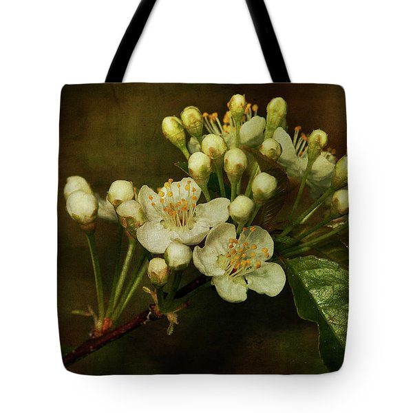 White Blossoms Tote Bag by Cindi Ressler