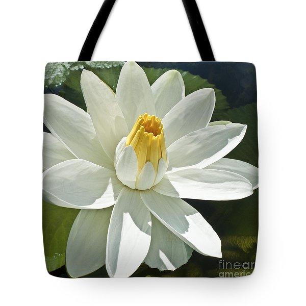 White Water Lily - Nymphaea Tote Bag by Heiko Koehrer-Wagner