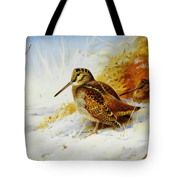 Winter Woodcock  Tote Bag by Celestial Images