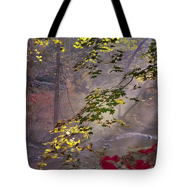Wissahickon Autumn Tote Bag by Bill Cannon