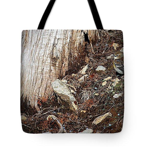Yellow-rumped Warbler Tote Bag by Elizabeth Winter