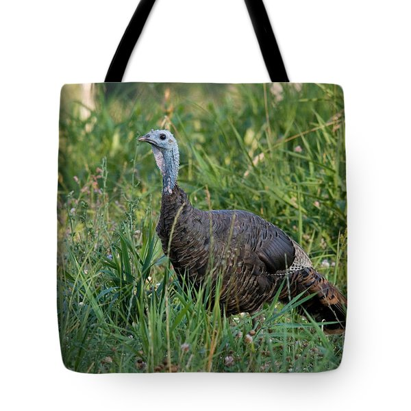 Eastern Wild Turkey Tote Bag by Linda Freshwaters Arndt