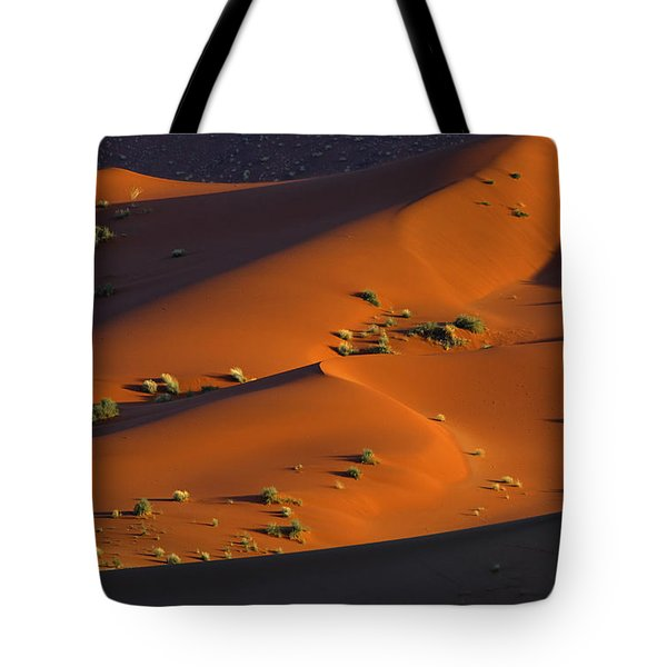 120118p071 Tote Bag by Arterra Picture Library