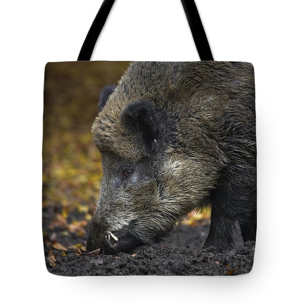 121213p269 Tote Bag by Arterra Picture Library
