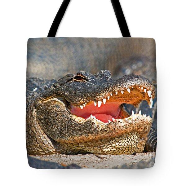 American Alligator Tote Bag by Millard H. Sharp