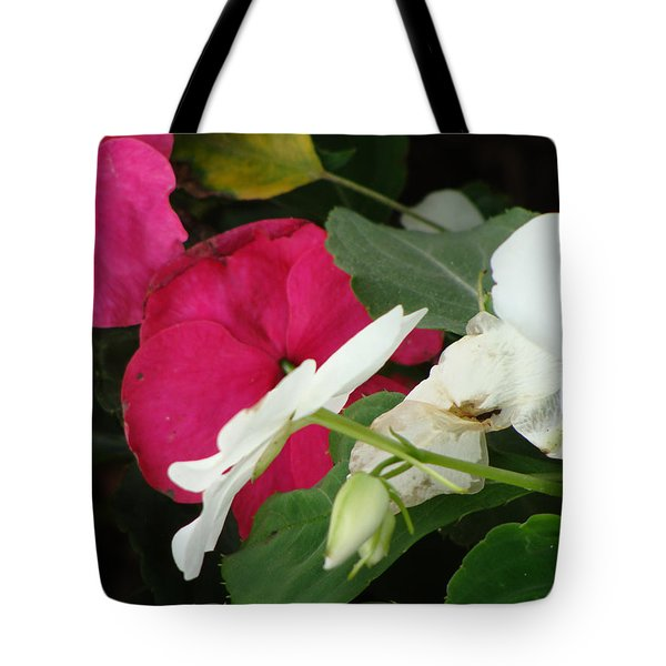 A Quiet Place Tote Bag by Ira Shander