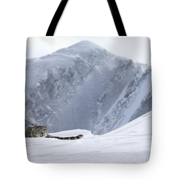 Absolute Solitude Tote Bag by Wildlife Fine Art