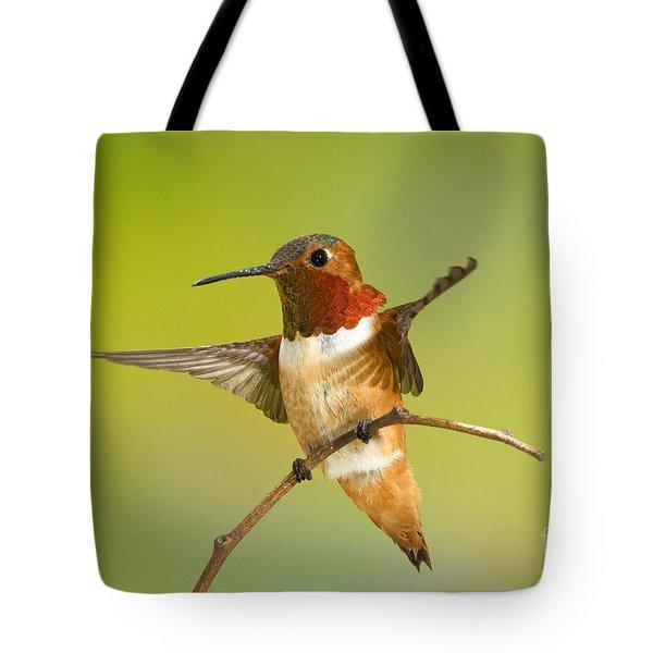 Allens Hummingbird Tote Bag by Anthony Mercieca