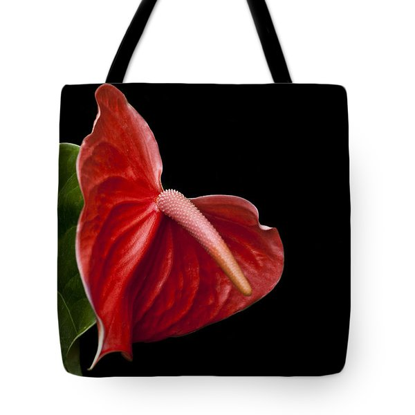 Anthem Tote Bag by Doug Norkum