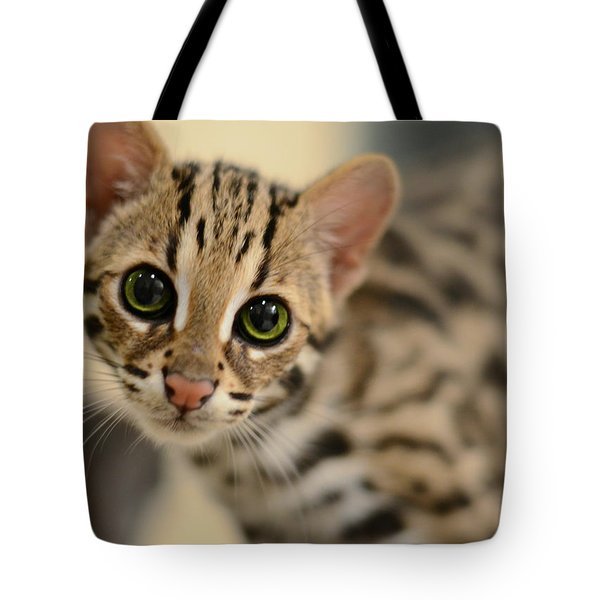 Asian Leopard Cub Tote Bag by Laura Fasulo