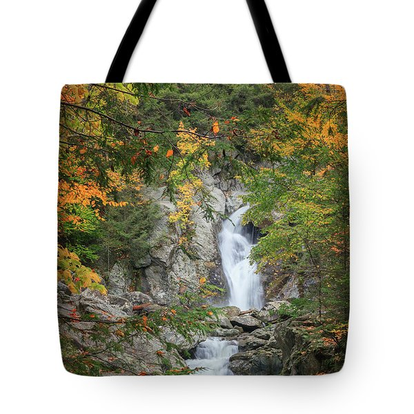 Bash Bish Falls Tote Bag by Bill  Wakeley