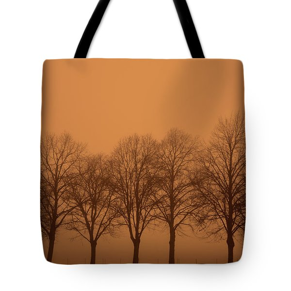 Beautiful Trees In The Fall Tote Bag by Toppart Sweden