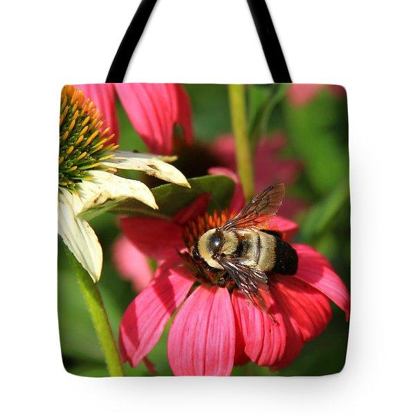 Bee Nice Tote Bag by Reid Callaway