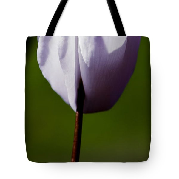 Before The Bloom Tote Bag by David Patterson