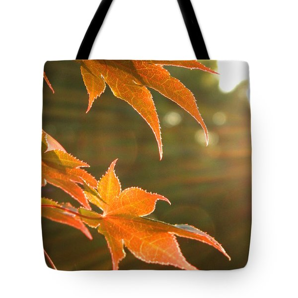 2 Chronicles 6 Tote Bag by Andrea Anderegg