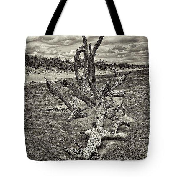Desolate Tote Bag by Marcia Colelli