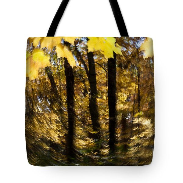 fall abstract Tote Bag by Steven Ralser