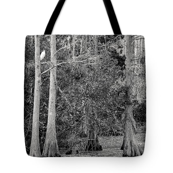 Grassy Waters Tote Bag by Bruce Bain