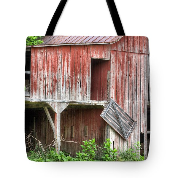 Hanging by a Moment  Tote Bag by JC Findley